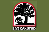 Live Oak Stud